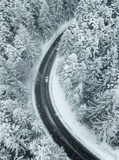 Winter Cold Temperature Snow Tree Plant Transportation No People Nature Mode Of Transportation Day Beauty In Nature Frozen Track High Angle View Land Curve Covering Tranquility Rail Transportation Outdoors Wheel Snowing Nature Driving Car