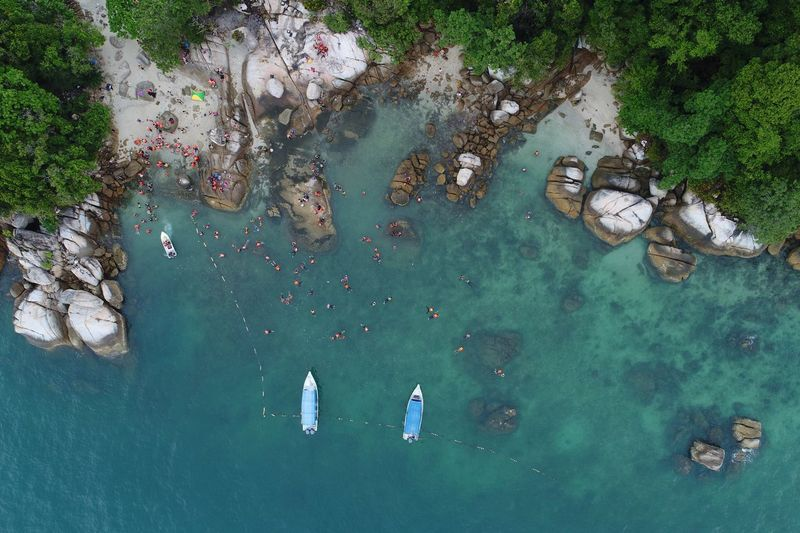 High angle view of fishes swimming in sea