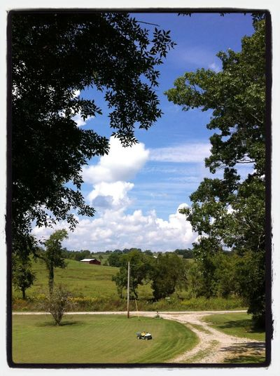 Gordonsville Beauty Country