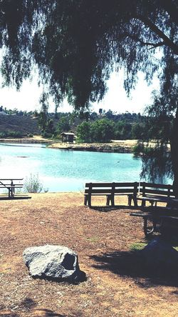 Park Bench Pond Peaceful Relaxing Trees