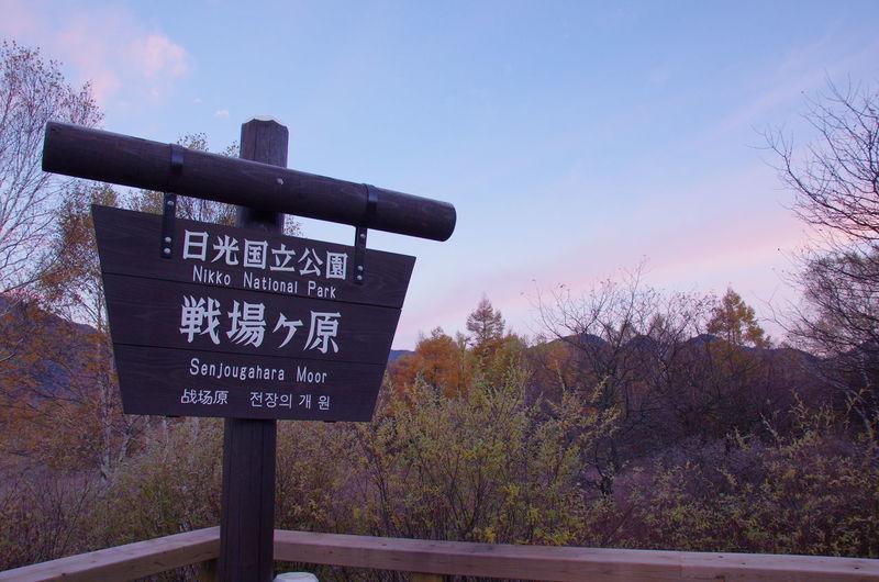 紅葉の時期は混みますね Sky Sunset No People 日光 Traveling 旅行 風景 自然 Nature 戦場ヶ原