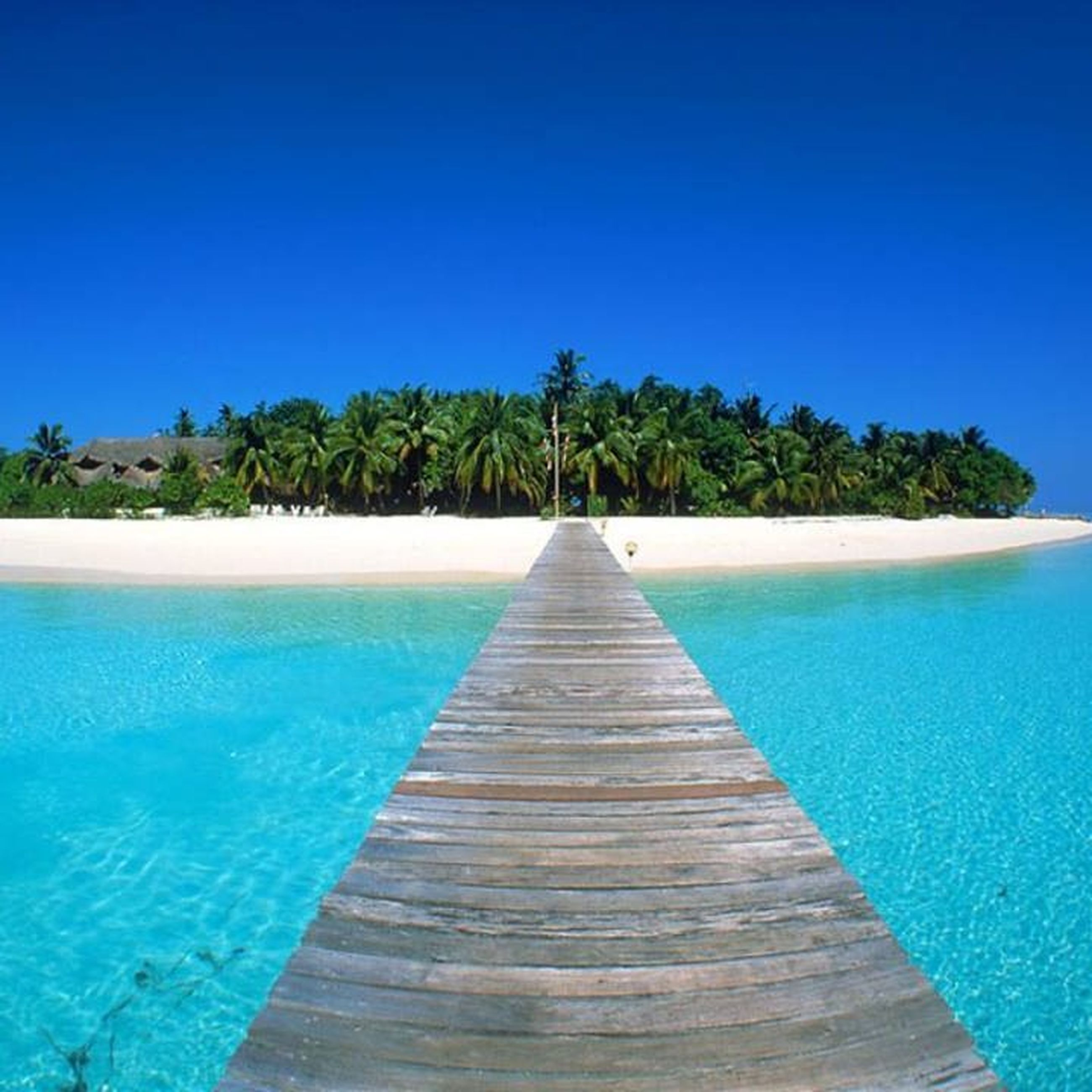 blue, water, sea, clear sky, tranquility, tranquil scene, the way forward, tree, beach, scenics, beauty in nature, horizon over water, copy space, nature, palm tree, diminishing perspective, idyllic, swimming pool, boardwalk, outdoors