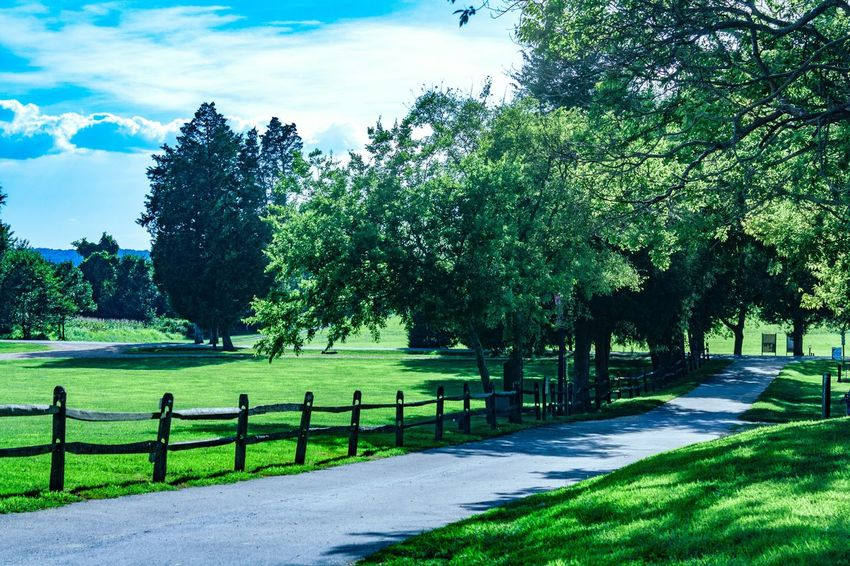 Colour Of Life Jefferson Patterson Park Maryland Green Blue Blue Sky Green Grass Fence Path Pathway Pathway In The Forest Farmland Ranch Life Ranch Park EyeEmBestPics EyeEm Best Edits EyeEm Gallery (null)EyeEm Nature Lover Landscape Nature_collection Outdoor Photography Scenery Tree