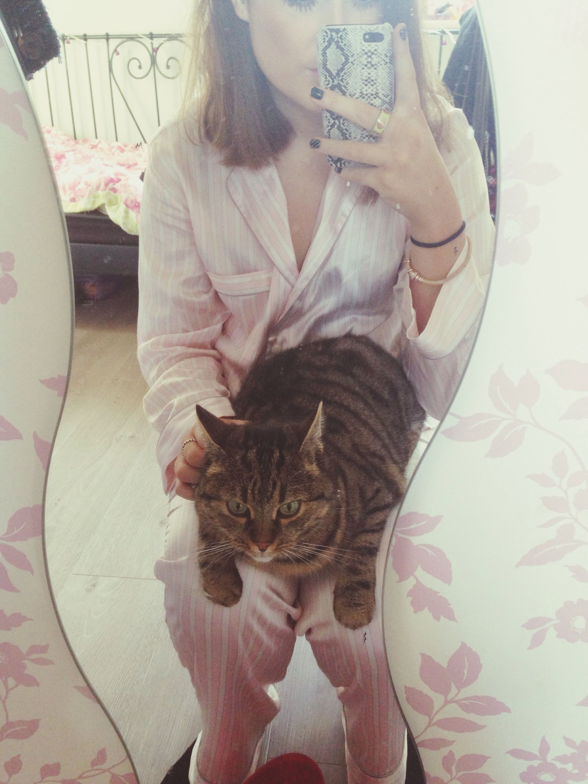 indoors, high angle view, relaxation, pets, domestic cat, lifestyles, home interior, domestic animals, bed, cat, animal themes, sitting, leisure activity, one animal, person, casual clothing, lying down, table