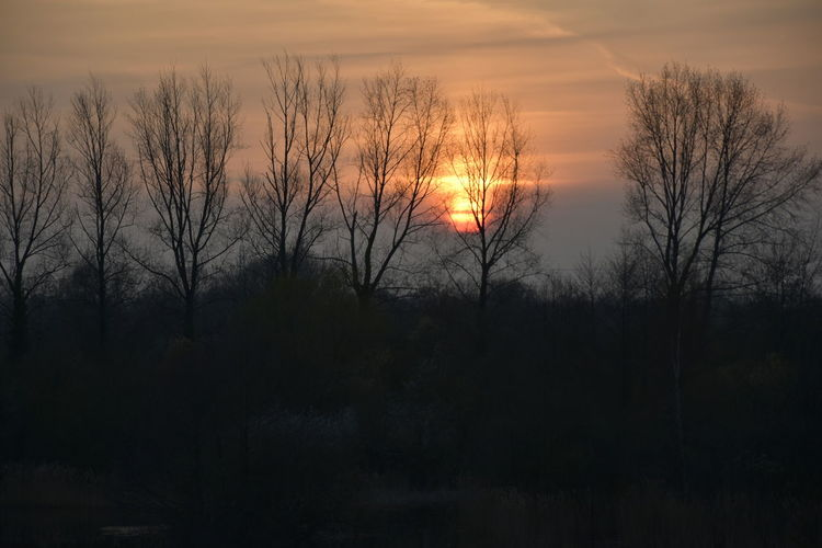 Face Sunset Sky