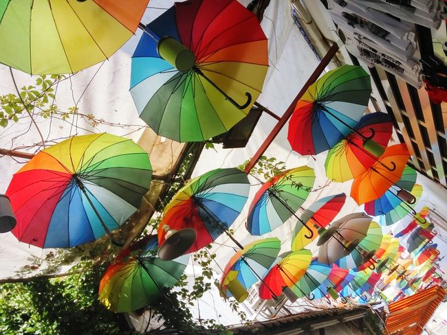 Umbrellas Flying Umbrellas Umbrella Street Art Colourful Street Fun Good Mood Multi Colored Choice Variation Low Angle View Day Close-up