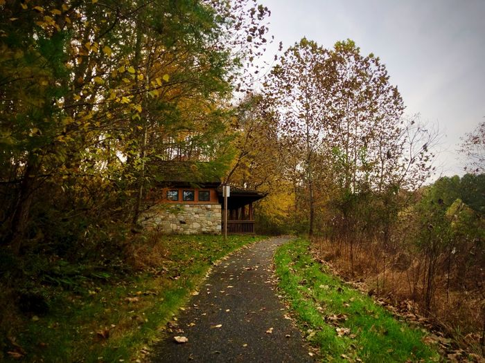 Completed Running Trail Beautiful Woman Autumn colors Photography Fall Beauty Nature_collection Beautiful Plant Tree Nature Architecture Growth No People Sky Grass Direction Footpath Building Exterior Day Park The Way Forward Built Structure Building Green Color Park - Man Made Space Land Outdoors