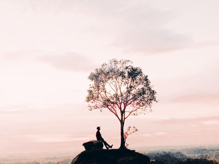 Silhouette person standing by tree against sky during sunset