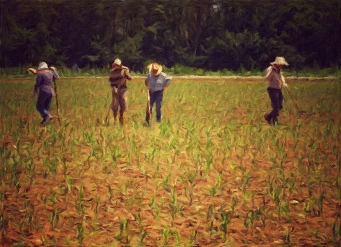 Friends standing on grassy field