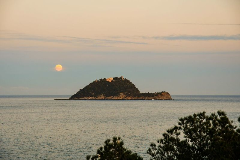 Island and full moon Super Moon 2018 Full Moon Seascape Island View  Sunset And Moon Pinaceae Tree And Sea Nature Beautiful Nature Tranquil Scene Travel Destinations Vacation Relaxing Sea Sunset Nature Outdoors Beauty In Nature Scenics Tranquility Moon Horizon Over Water No People Sky