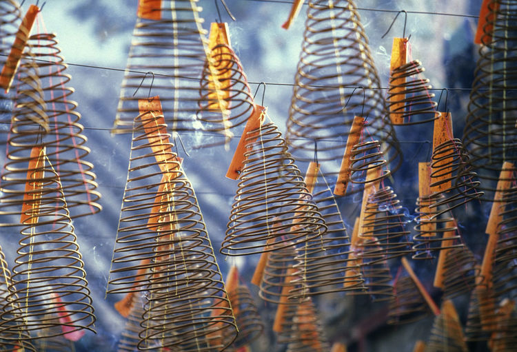 Low angle view of spiral incenses hanging at temple