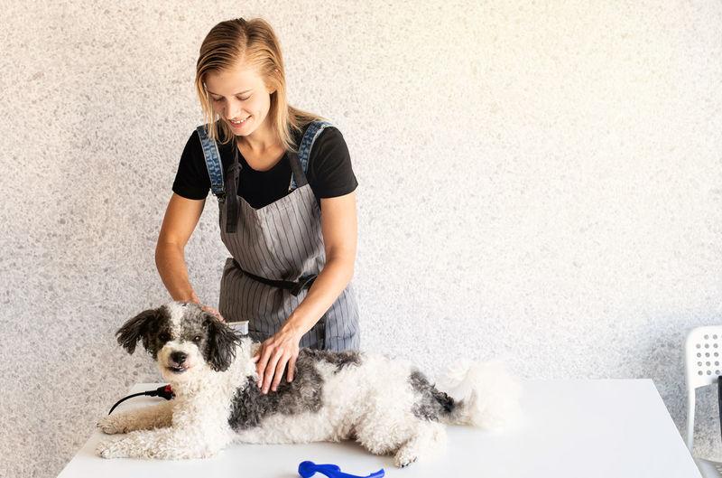 Young woman grooming dog at salon