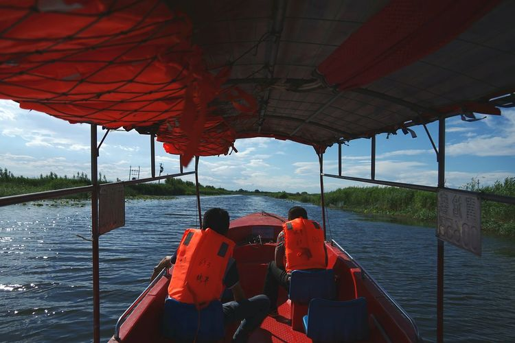 China Photos Baiyangdian Lake Reeds Fields Boat Trip Travel Fresh Scent Bright Day Streamzoofamily