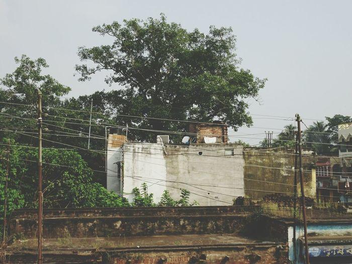 Bamunpukur Mayapur Home Perspectives On Nature EyeEmNewHere
