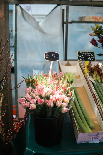 Arrangement Choice Day Flower Flowers Food Food And Drink For Sale Freshness Market Prices Retail  Spring Tulips Variation