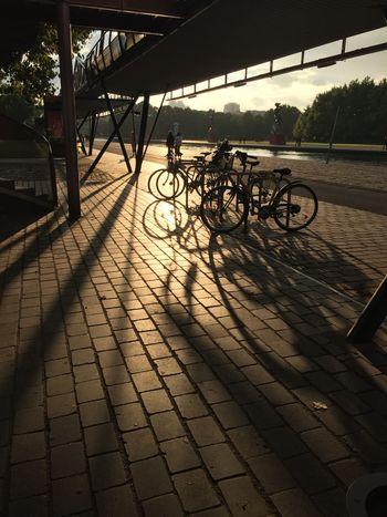 View Sky Water Lights Paris Bicycle Statute Sunset People Good Time Beautiful Nature Magic EyeEmNewHere EyeEmNewHere