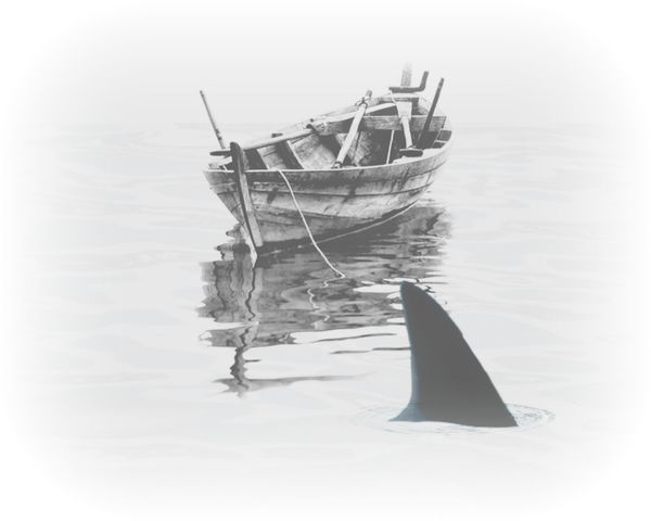 Edition Black And White Seascape Water Reflections Boat One Animal Fish Shark Fin Swimming White Background Outdoors