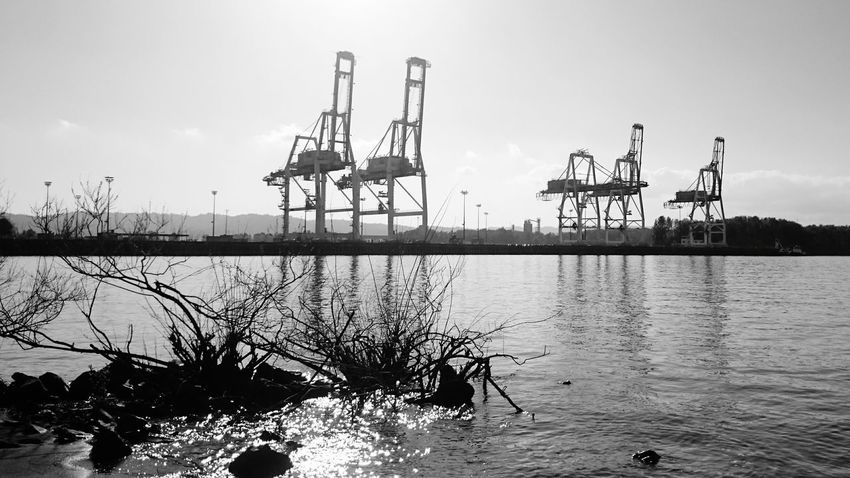 Crane Industrial Industry Port Columbia River Pacific Northwest  PNW Portland Oregon Blackandwhite Black And White Monochrome River Shipping  Shipping Terminal Shipping Yard