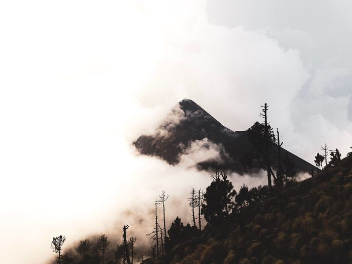 Volcano hidden by the fog. Volcano Landscape Volcano Sunset Fog Sky Tree Plant Low Angle View Cloud - Sky Nature Day No People Outdoors Growth Architecture Building Exterior Built Structure Mountain Land