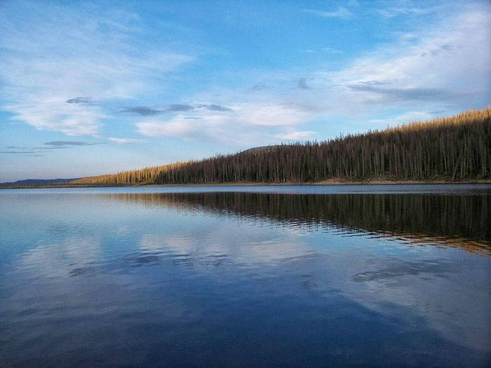 Reflections..... Cloud - Sky Sky Beauty In Nature Water Scenics Nature Reflection Tranquility Tranquil Scene No People Lake Outdoors Day Tree