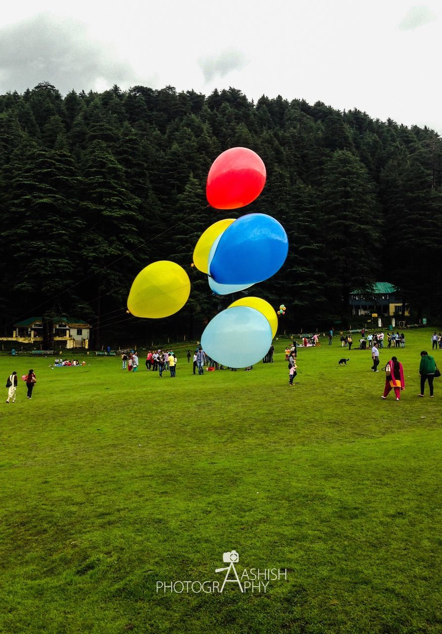 grass, tree, balloon, green color, large group of people, celebration, real people, fun, leisure activity, multi colored, field, lifestyles, men, outdoors, day, helium balloon, sky, playing, togetherness, women, nature, people