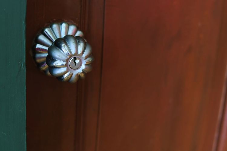 Close-up of shell on door