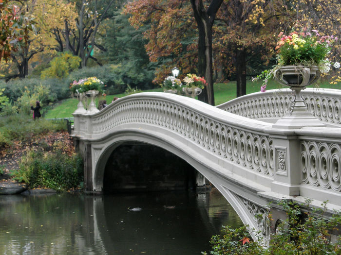 Bridge Over Lake At Central Park In City