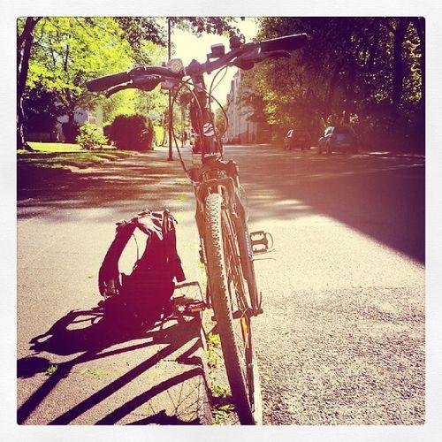 Aufgehts Jamiasanmitmradldo Bike