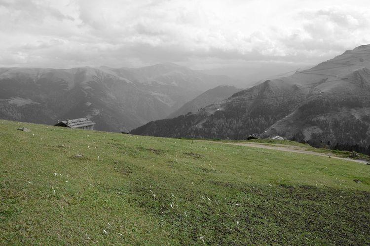 Trabzon Uzungol Turkey Salimodi Mezrası Demirli Köyü