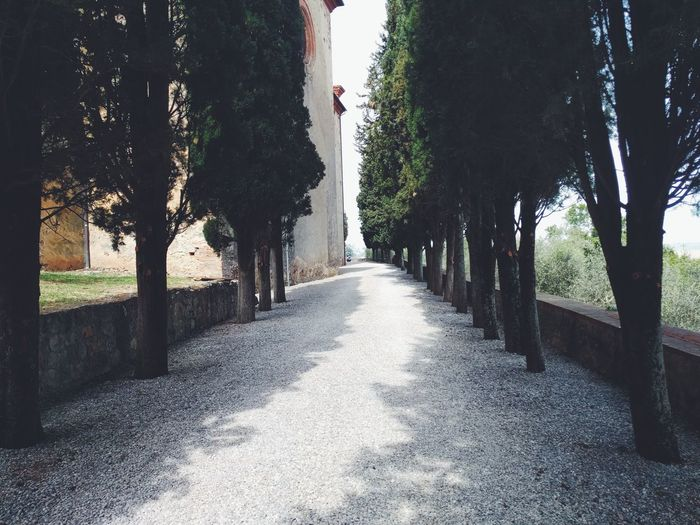 Shadow Full Length The Way Forward Tree Day Outdoors Nature Sky Alleyway Tuscany Architecture Tuscany Landscape Summer Cypress Trees  Road