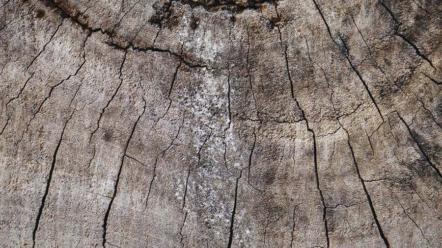 Wood background Patterns In Nature Patterns Pattern, Texture, Shape And Form Pattern Timberland Timber Wooden WoodLand Wood White White Background Black Textured  Backgrounds Pattern Flooring Full Frame Textured Effect Nature Abstract Wood - Material Close-up Wood Grain Rustic No People Day Outdoors Brown Hardwood Cracked