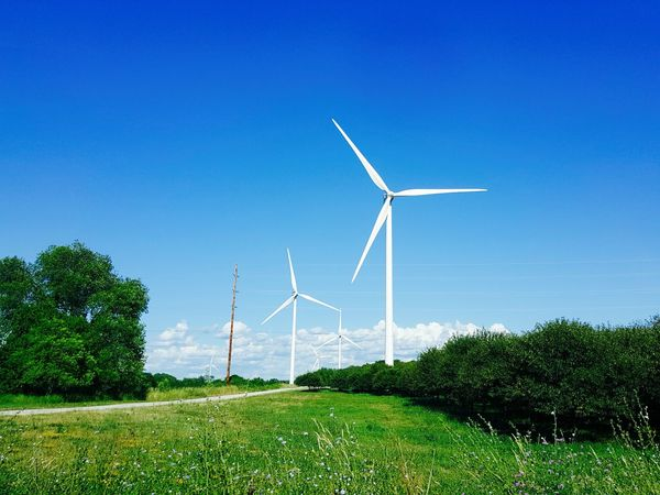 Taken along the side of the road in summer time. Energy Environmental Conservation Green Journey Power Summer Travel Wind Windmills