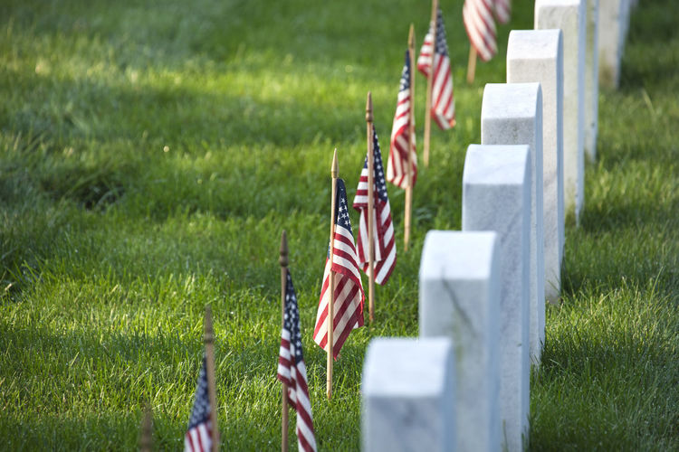 Flags in a row on grass by tombstones in grave