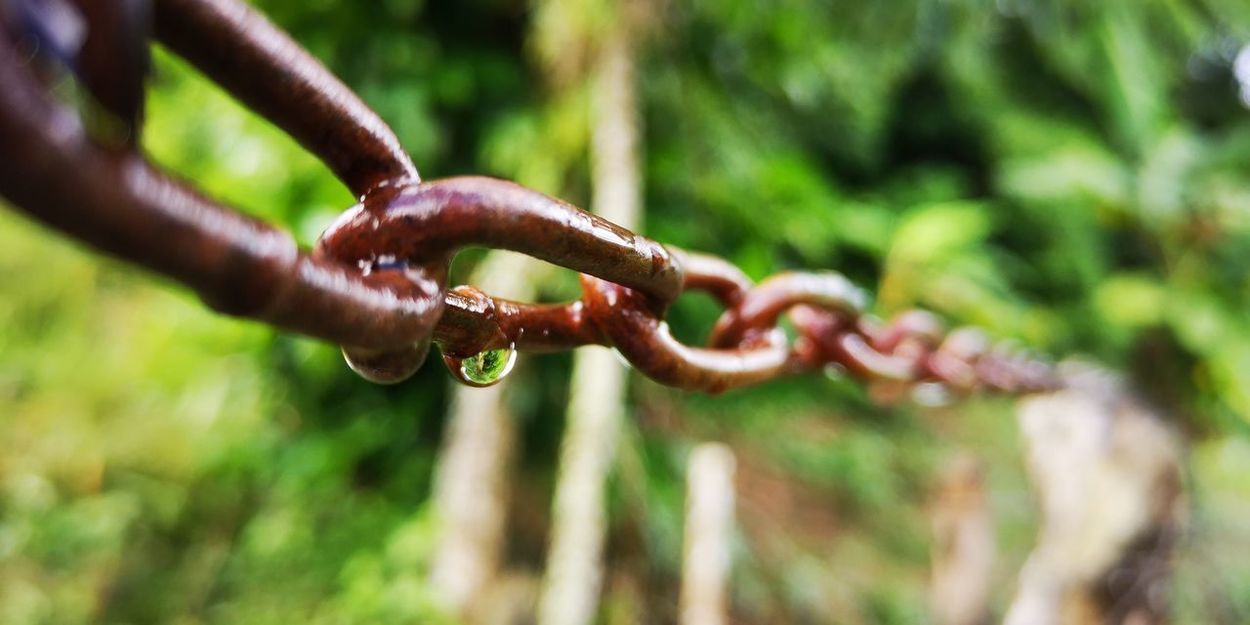 Chains Cabrera Republica Dominicana Water Rusty Chain Metal Hanging Drop Close-up Green Color Link Dripping RainDrop Dew Locked Twisted Wet Rainy Season Rain Attached