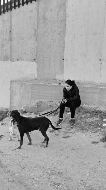 Carlota Girl Outdoors Outdoor Photography Urban Dog Wall Building Exterior Madrid SPAIN Daylight Sunset Concrete Wall Dust Headwear Pets Full Length Dog Child Stories From The City