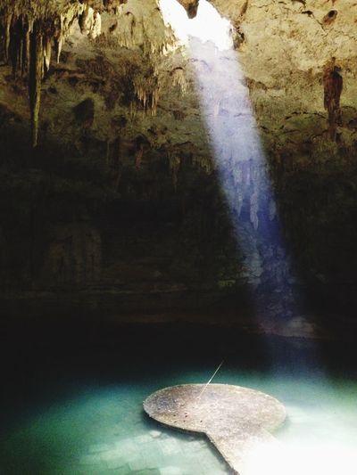 Cenote Valladolid Yúcatan Nature_collection Trip