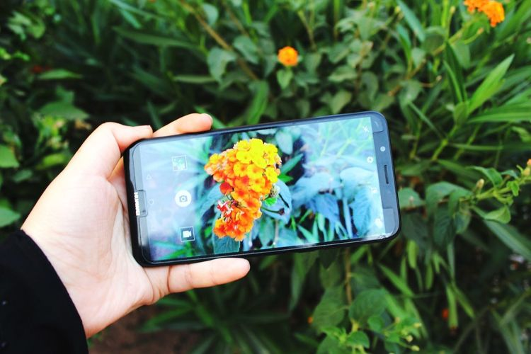 HUAWEI Photo Award: After Dark Huawei Photography Huawei Y7 Human Hand Photo Messaging Photography Themes Wireless Technology Technology Photographing Camera - Photographic Equipment Selfie Flower Mobile Phone