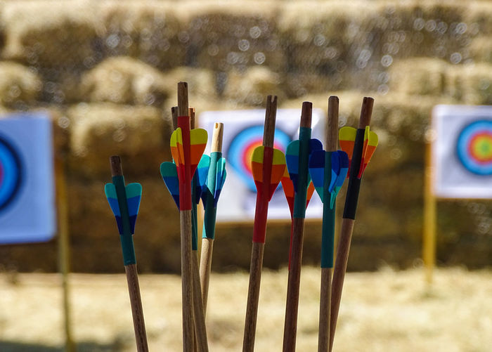 ezefer Archery Arrow - Bow And Arrow Art And Craft Choice Close-up Container Day Field Focus On Foreground Land Large Group Of Objects Multi Colored Nature No People Outdoors Selective Focus Sport Sports Target Sunlight Variation