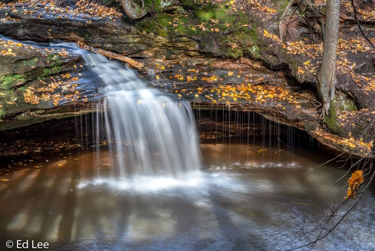 Houghton Falls Nature Preserve Wisconsin Slow Shutter Long Exposure Houghtonfalls Landscape_Collection Nature Fall Colors Beauty In Nature Nature Photography Streamzoofamily Malephotographerofthemonth Water Motion Long Exposure Beauty In Nature Scenics - Nature Nature Tree