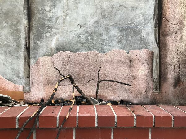 Nuns Fire October 2017 Brick Planter Burned Plant EyeEm Selects Pattern Day Wall - Building Feature No People Wall Brick