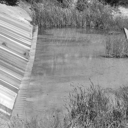 Selective Color Nature Photography Open Field/marsh Blackandwhite Photography Spillway