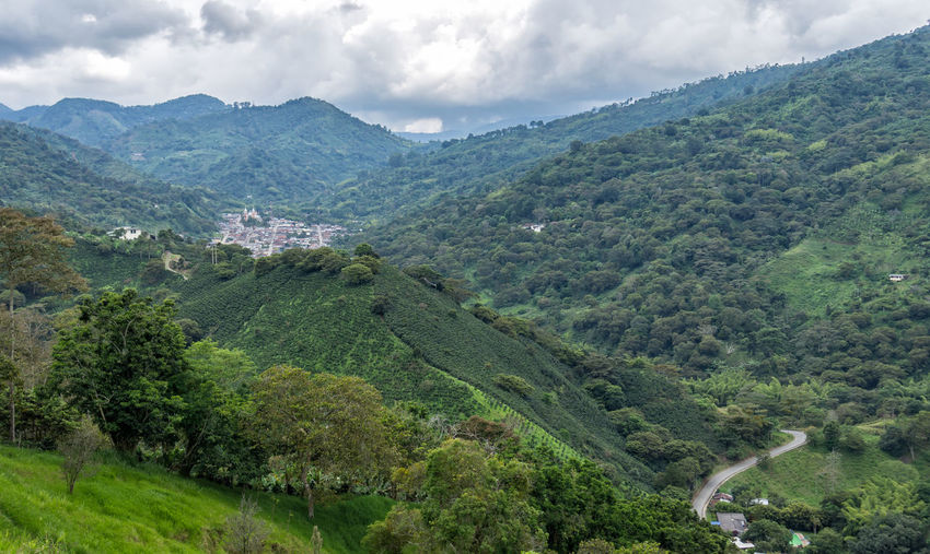 A small town in the middle of the Colombian mountains. Genova Quindio. Tree Cloud - Sky Scenics - Nature Plant Mountain Environment Beauty In Nature Green Color Sky Landscape Nature Tranquil Scene Lush Foliage Foliage No People Non-urban Scene Day Land Tranquility Mountain Range Outdoors Rolling Landscape