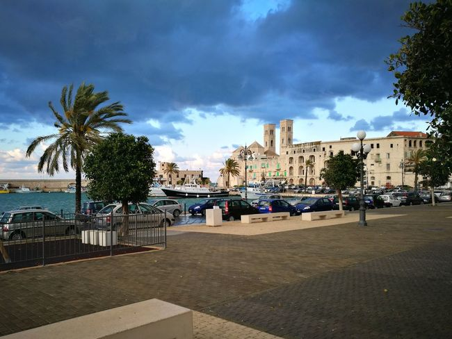 Cloud - Sky Outdoors Sky City Day Harbour View Molfetta Palm Tree BYOPaper! Scenics Tree
