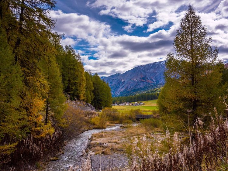 Betterlandscapes Cloud - Sky Sky Tree Tranquil Scene Nature Beauty In Nature Scenics Mountain Tranquility Landscape River No People Forest Day Outdoors Mountain Range Growth Grass Water EyeEmNewHere An Eye For Travel