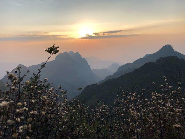 ดอยหลวงเชียงดาว EyeEm Selects Mountain Beauty In Nature Nature Scenics Sunset Tranquil Scene Tree Peak Day Mountain Range Outdoors Landscape Sky Tranquility No People