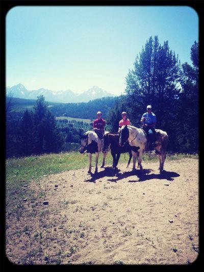 Horseback riding in JacksonHole Wyoming. Grandtetons