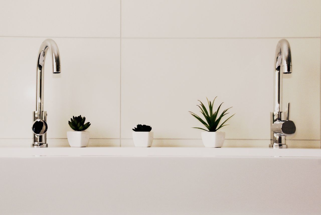Potted plants on sink in bathroom