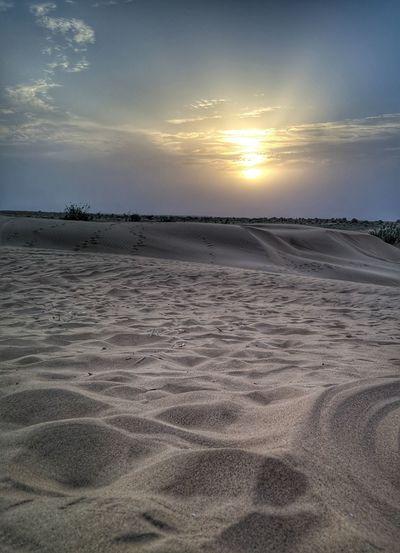 Sand Dune Low Tide Sunset Beach Sea Water Sand Desert Sun Summer Arid Landscape Barren Tire Track Drought Namib Desert Salt - Mineral Track - Imprint Horizon Over Land Capture Tomorrow It's About The Journey My Best Photo 17.62°