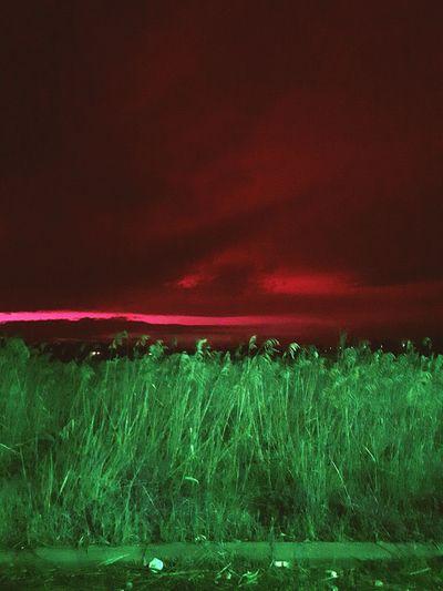 Apocalypse Scenario Creepy Paesaggio Rainingblood Judgement Day Inferno Dark Welcome to the End of Days