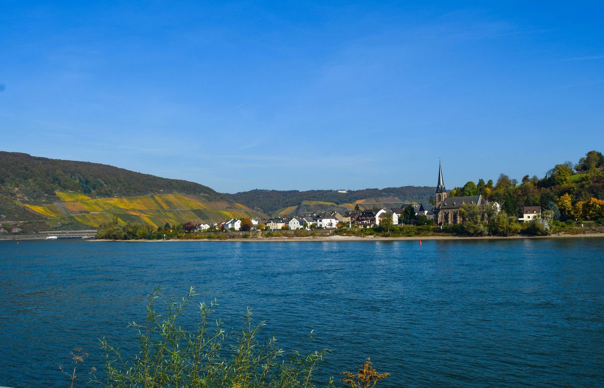A Sunny Autumn in Germany. Autumn Autumn colors Beauty In Nature Black Forest Blue Boppard City Copy Space Day Germany Mountain Nature No People Outdoors Panoroma Plant Scenics - Nature Sea Sky Tranquility Water Waterfront